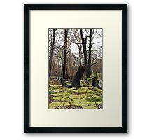 Moss regenerating six months on Framed Print