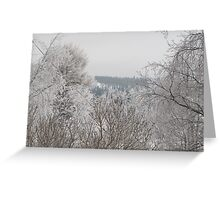 winter country in Northern Sweden Greeting Card