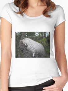A mysterious stump that looks a little funny Women's Fitted Scoop T-Shirt