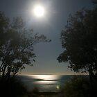 Moon over Totaranui Beach by Paul Mercer