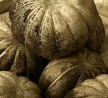 Pumpkins (Sepia) by Charuhas  Images