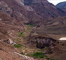 View to Rio Grande de Atacama by parischris