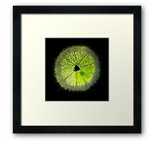 Spiked Lime Framed Print