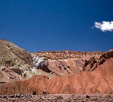 Mantancilla de Atacama, Atacama Desert, Chile by parischris