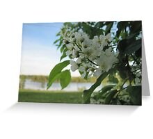 floral flower Greeting Card