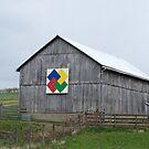 Barn in Central 0HI0 by debbiedoda