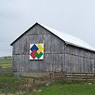 Barn in Central 0HI0 by debbiedoda