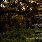 Garden of Love-Monserrate grounds by Wayne Cook