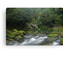 Crystal pool at the Riwaka Resurgence Canvas Print