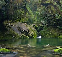 The Crystal Pool at the Riwaka Resurgence by Paul Mercer
