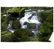 Riwaka River Poster
