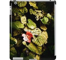 heart iPad Case/Skin
