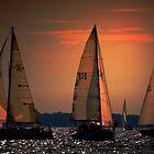 Sunset delight by cherylc1