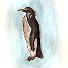 Penguin by Claire Dimond
