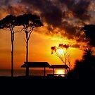Tropical sunset... by DaveHrusecky
