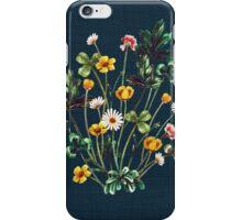 MeadowSweet Autumn on Rustic Blue iPhone Case/Skin
