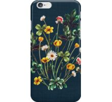 MeadowSweet Autumn on Rustic Blue iPhone Case/Skin
