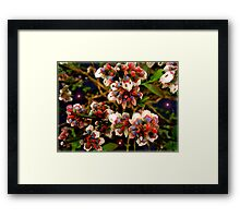 Growing Small ... Whispering Loud Framed Print