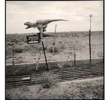dino • holbrook, az • 2009 Photographic Print