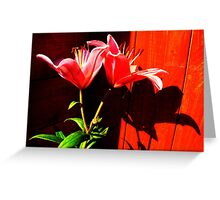 Morning Shadows Greeting Card