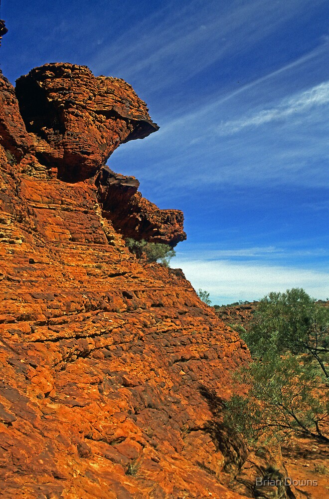 Mighty Kings Canyon by Brian Downs
