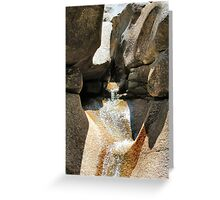 Lucy Brook at Diana's Baths, Bartlett, New Hampshire, USA Greeting Card