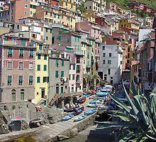Riomaggiore, Cinque Terre by Kris McLennan