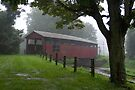 Moreland Covered Bridge Weathering A Storm (As-Is) by Gene Walls