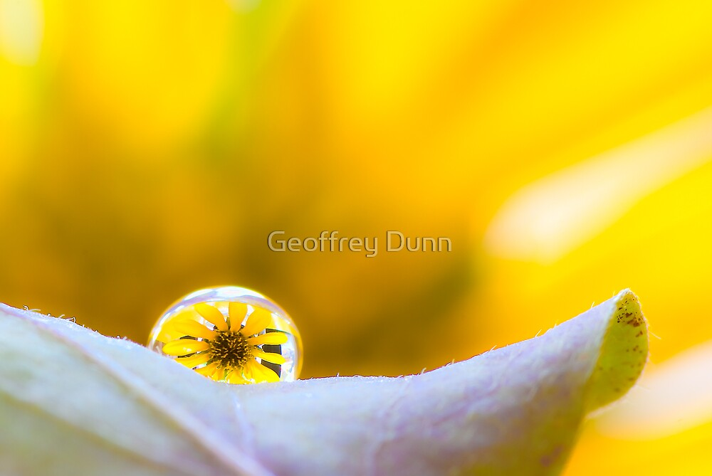 ...sunshine makes me happy... by Geoffrey Dunn