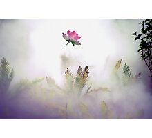 Misty Mood Photographic Print