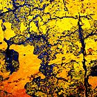 Yellow Peeling Paint on Blacktop by Dana Roper