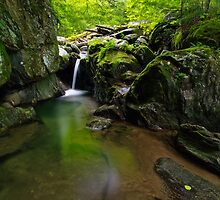 Honey Hollow Falls by Stephen Beattie