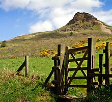 Roseberry Topping by David Lewins