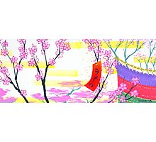 March Hanafuda - Cherry Blossoms Photographic Print