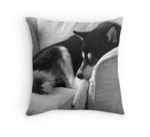 Comfort and Contrast Throw Pillow