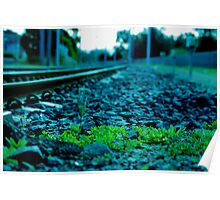 plants on train track Poster