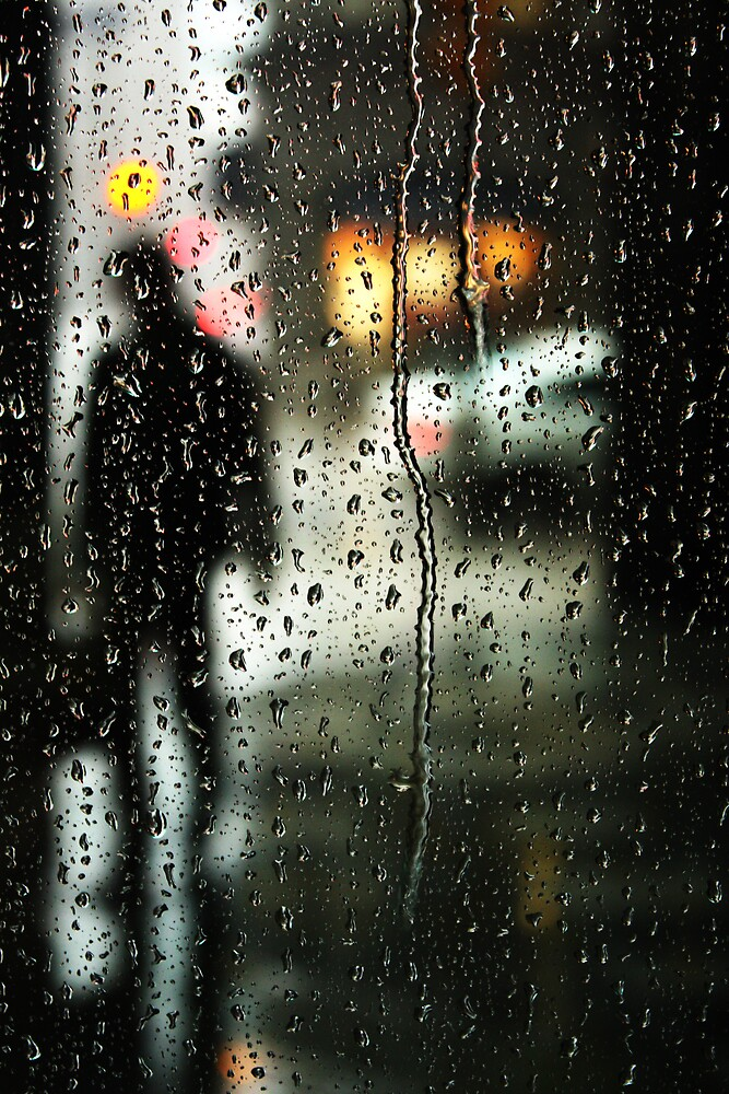 Waiting out the rain by Ursula Rodgers