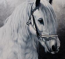 'Silver'-Gypsy Cob-Milltown Fair by Pauline Sharp