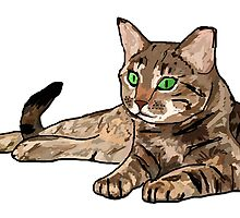 CAT | PHOTOSHOP | DRAWING by Ewan Paterson