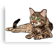 CAT | PHOTOSHOP | DRAWING Canvas Print