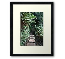 Covered Stone Walkway Framed Print