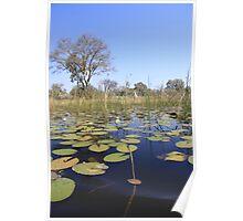 Okavenga Delta - Botswana Poster