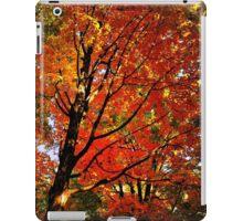 Red Maple iPad Case/Skin