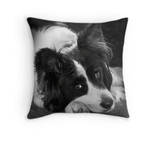 The Border Collie Throw Pillow