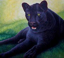 Black Leopard by Pauline Sharp