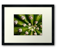 SpikeBurst Framed Print