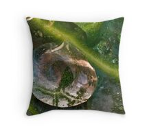 Droplet on a Leaf Throw Pillow