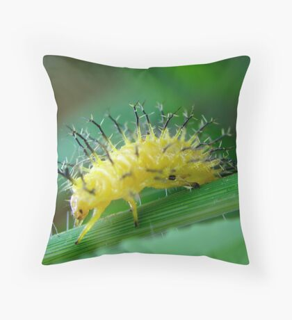 Mexican Spikey Throw Pillow