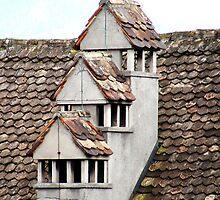 Rapperswil Roof by Kris McLennan
