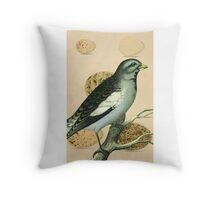 Vintage Bird and Eggs Throw Pillow